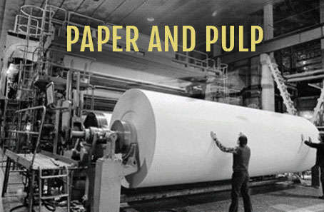 Paper and Plup